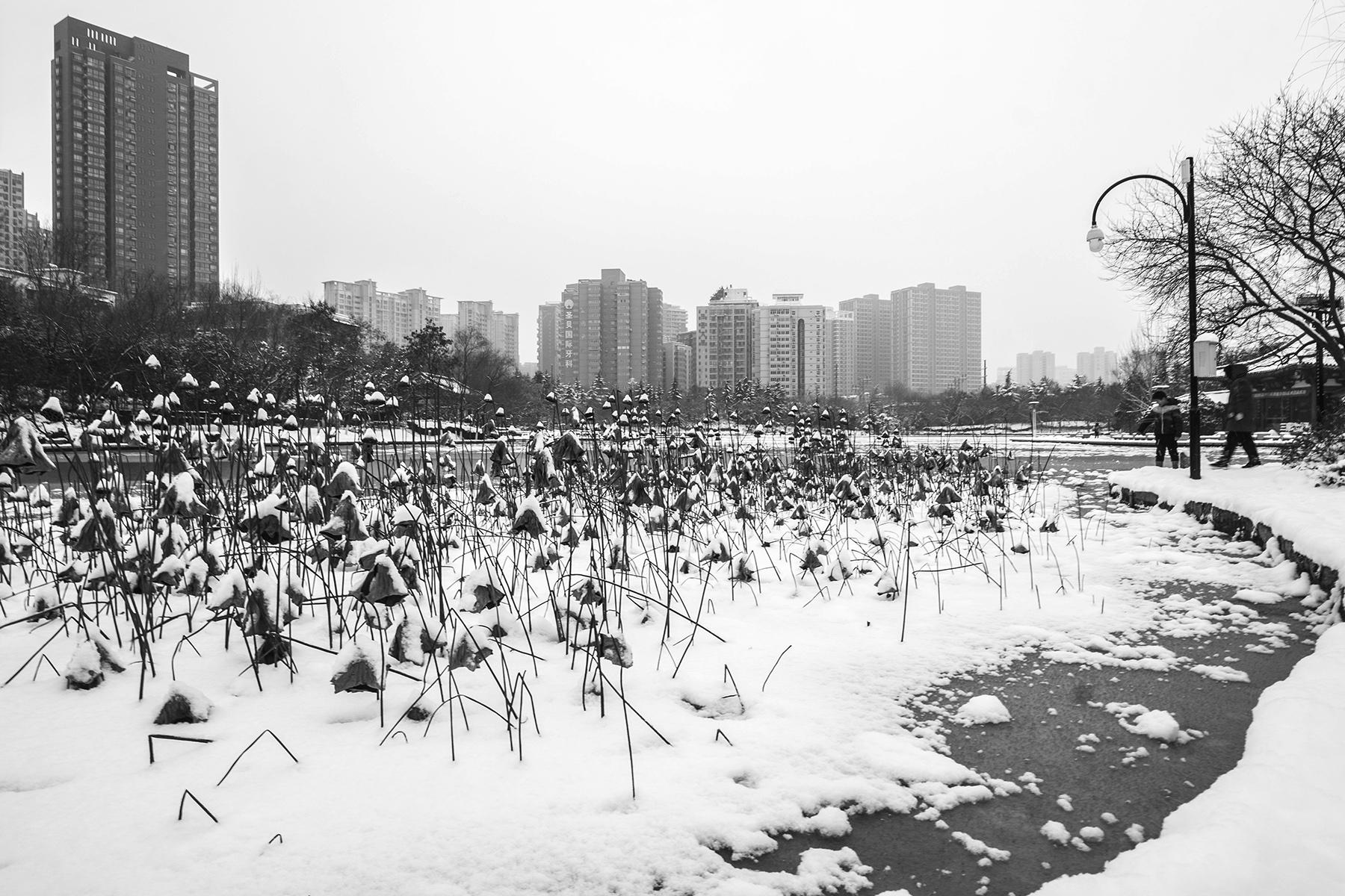 林泉一叟作品:古城好大雪(二)