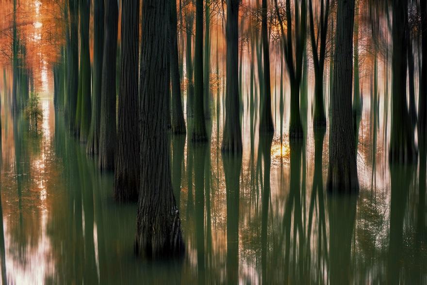 易简作品:夕阳下的水山林