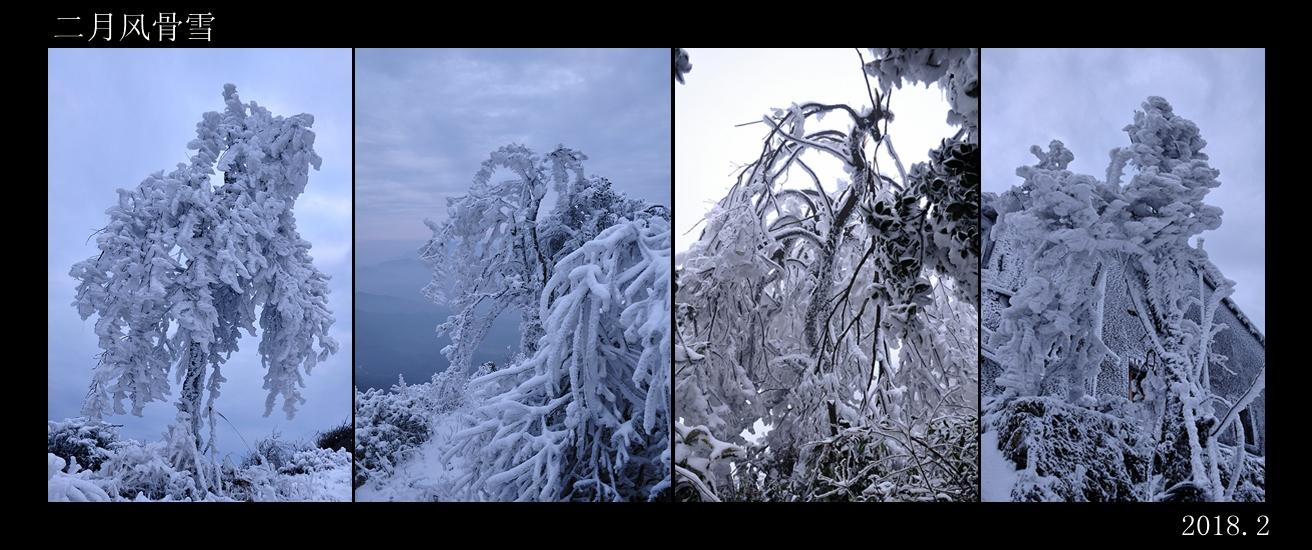 fangyong1226作品:二月雪