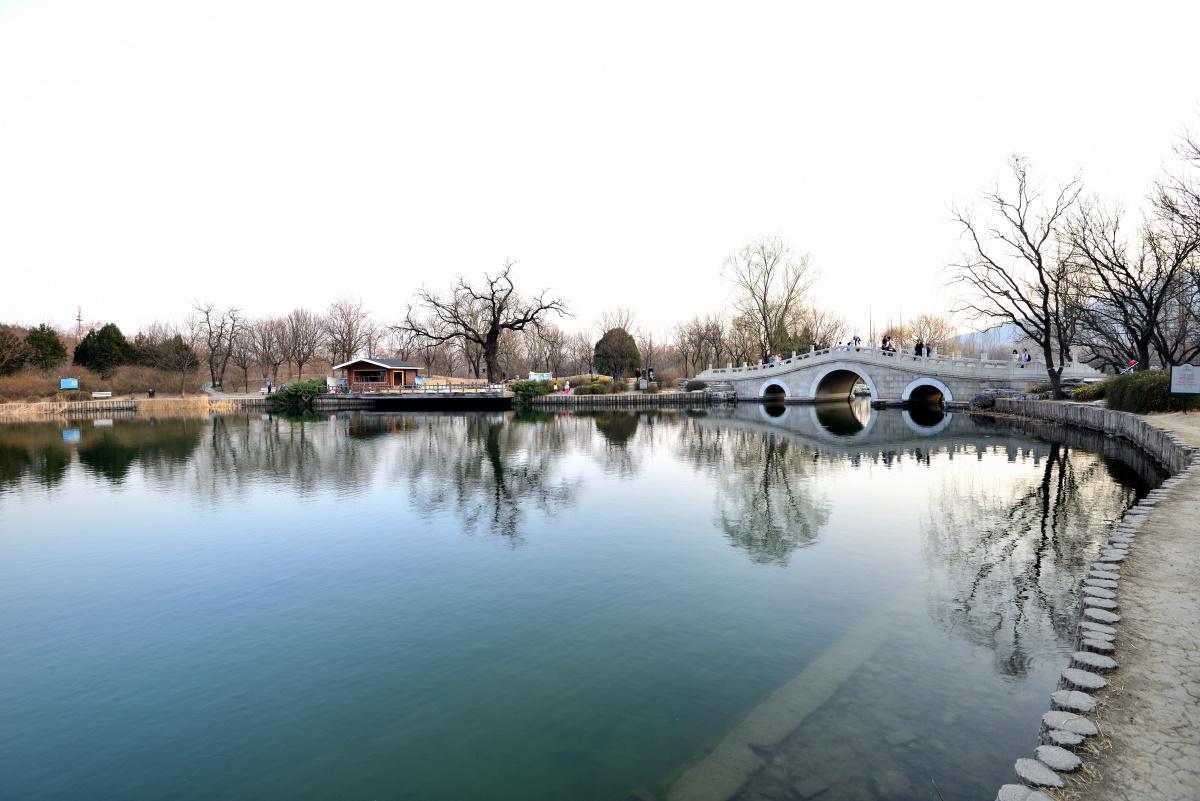 二郎山客作品:北京植物园1