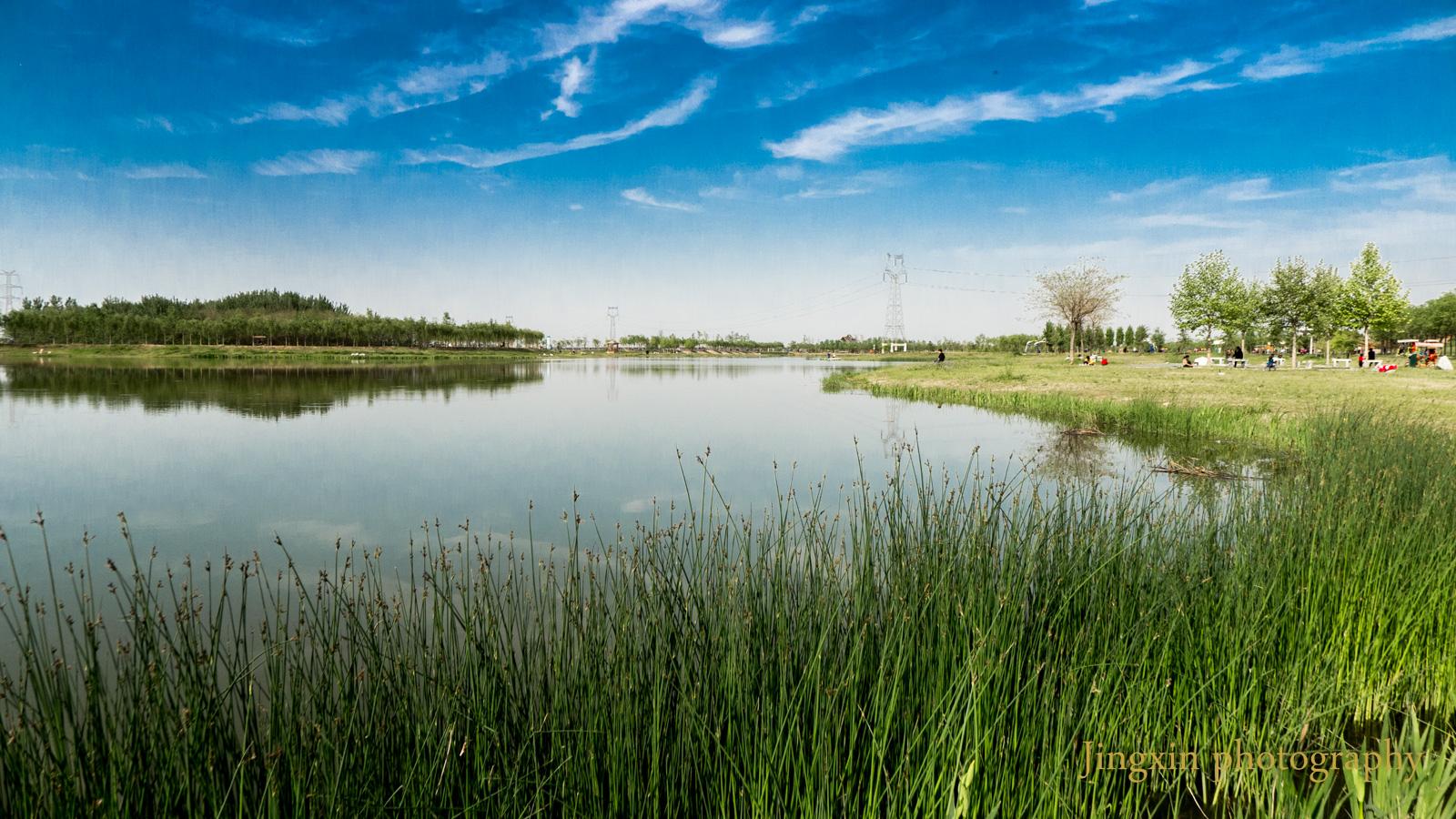 境空明道作品:渭河南岸风光