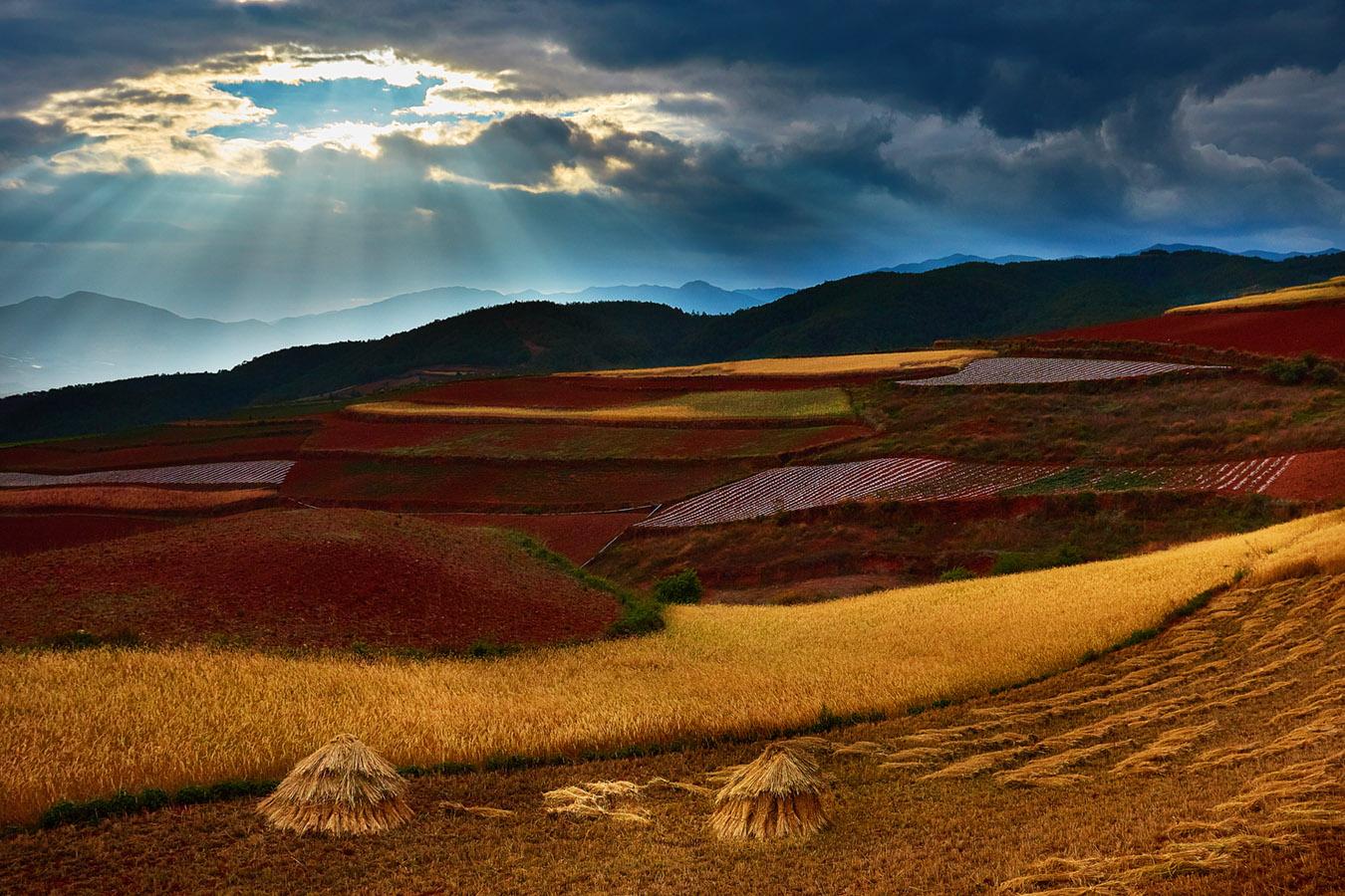 李达明作品:光漏红土地