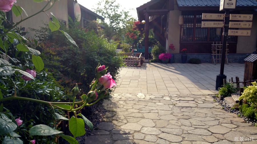 观景山庄作品:蔷薇花街