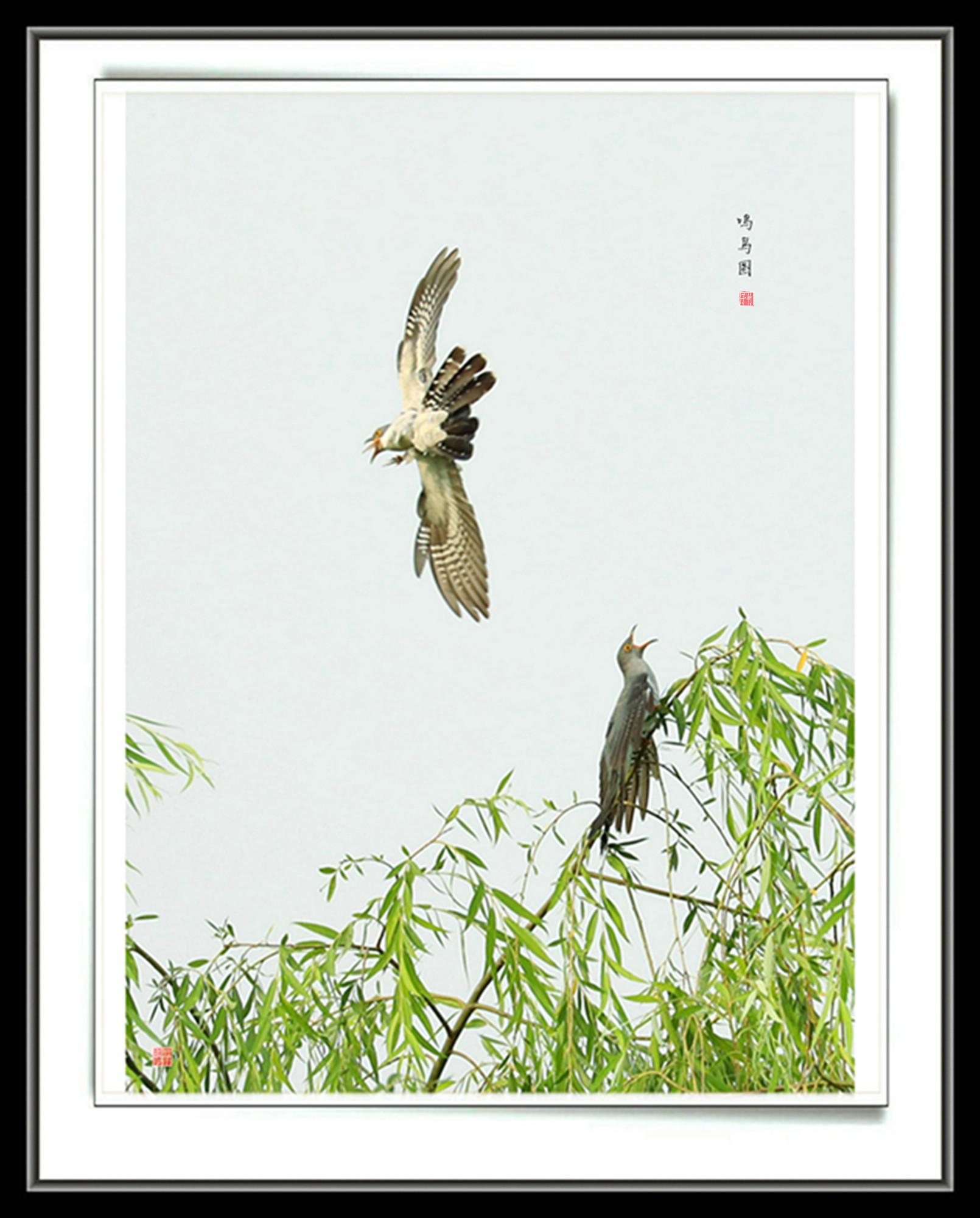 竹子laozhu作品:鸣鸟图