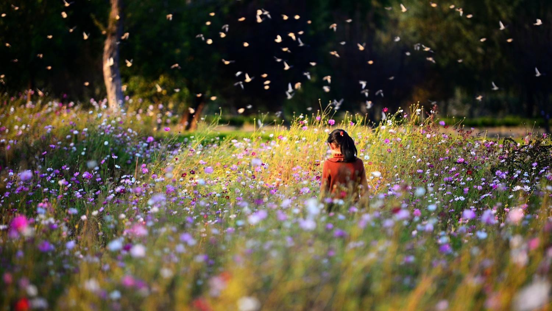 一潭水作品:孩子与花