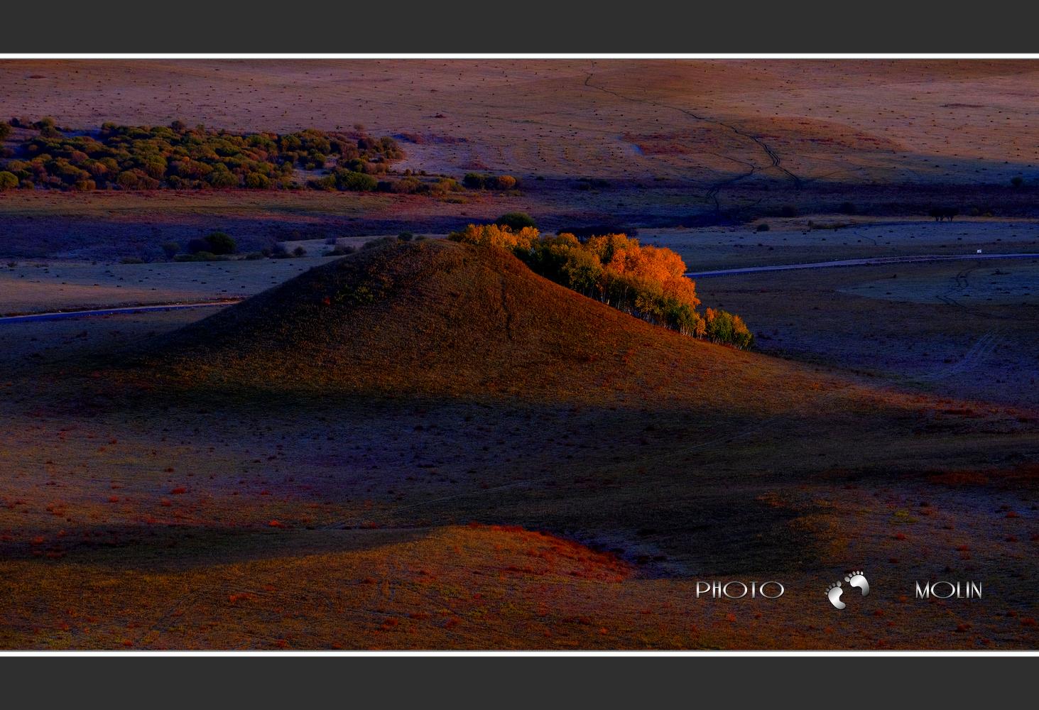 墨林作品:秋天的红山军马场