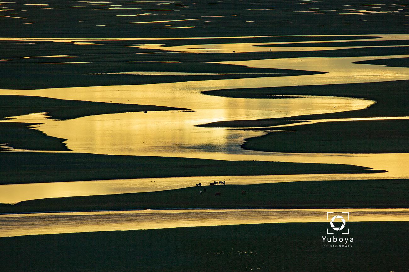 渔泊涯作品:河道流金