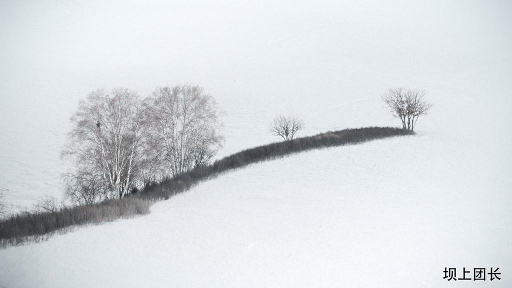 坝上团长4288作品:凛立在风雪中的旗帜