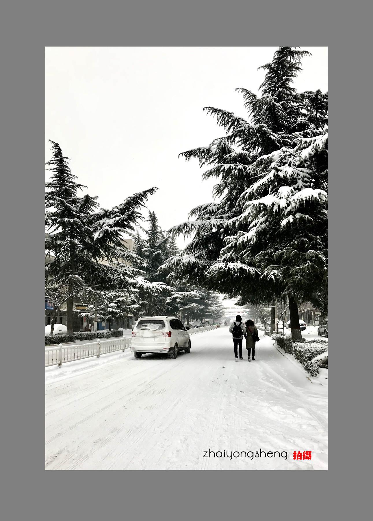 羽佳518作品:春雪