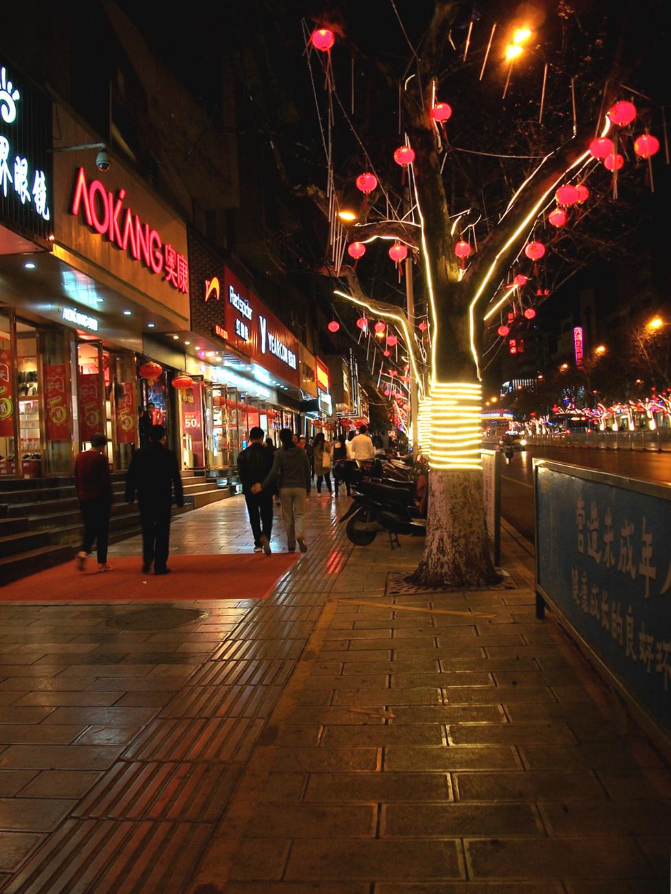 菠萝菠萝蜜蜂作品:夜晚的街头