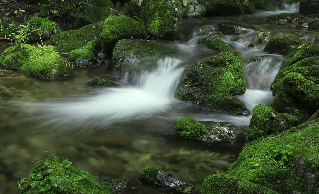 影随光作品:绿谷溪流