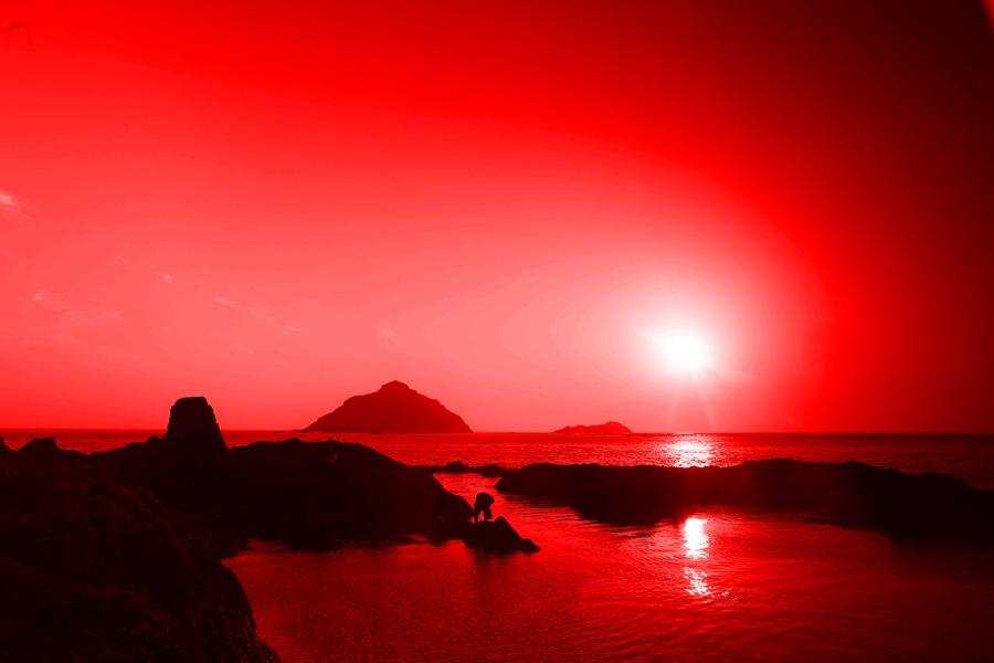 驼腰作品:碧海红日