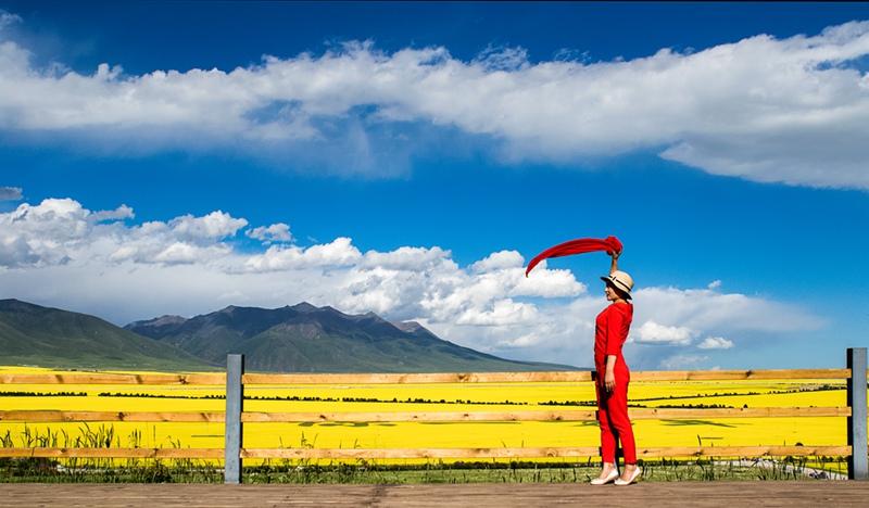 盛世太平2作品:青海湖油菜花