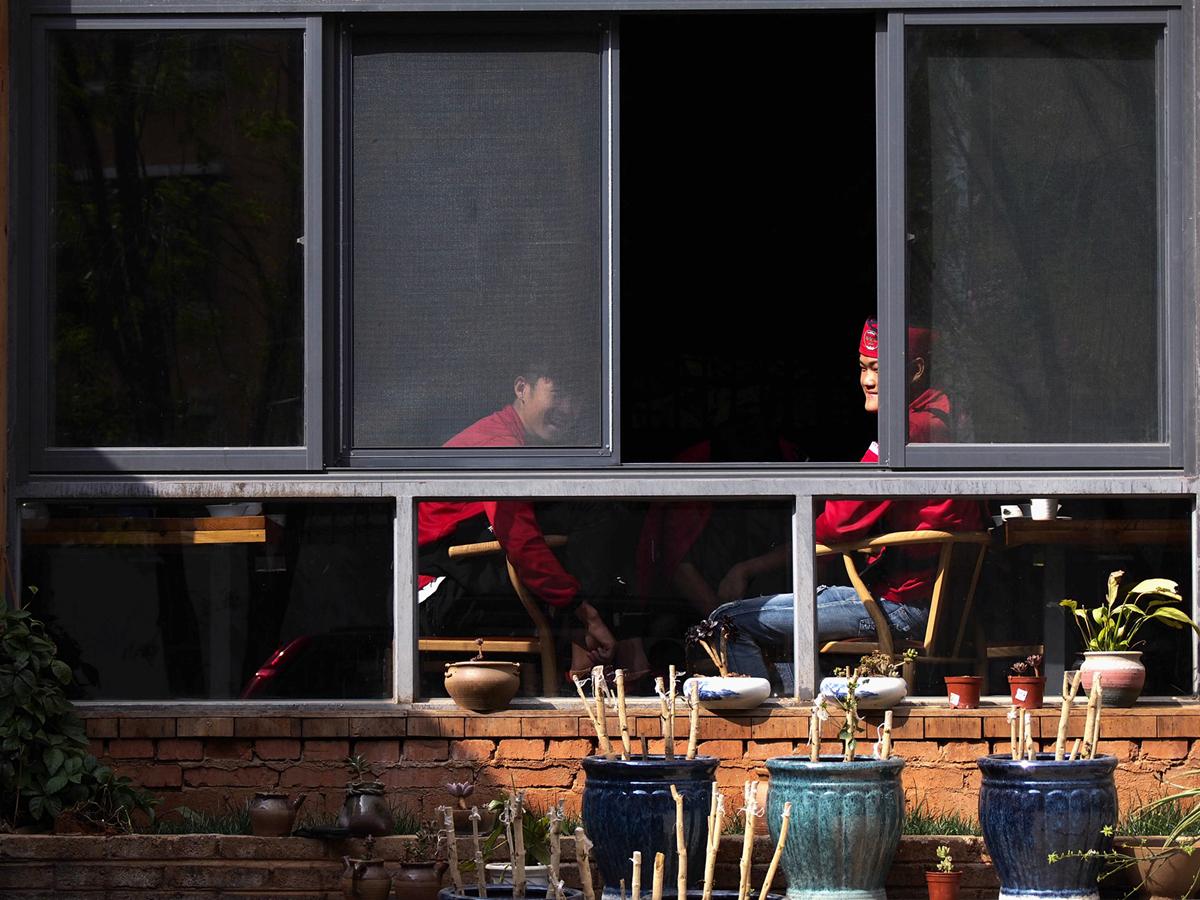 菠萝菠萝蜜蜂作品:窗
