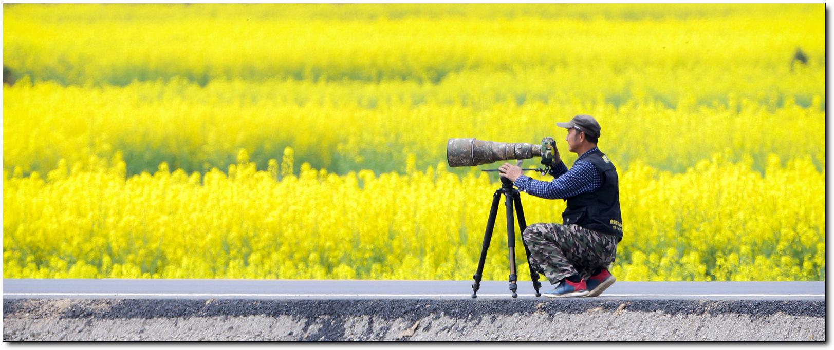 三虎作品:摄春