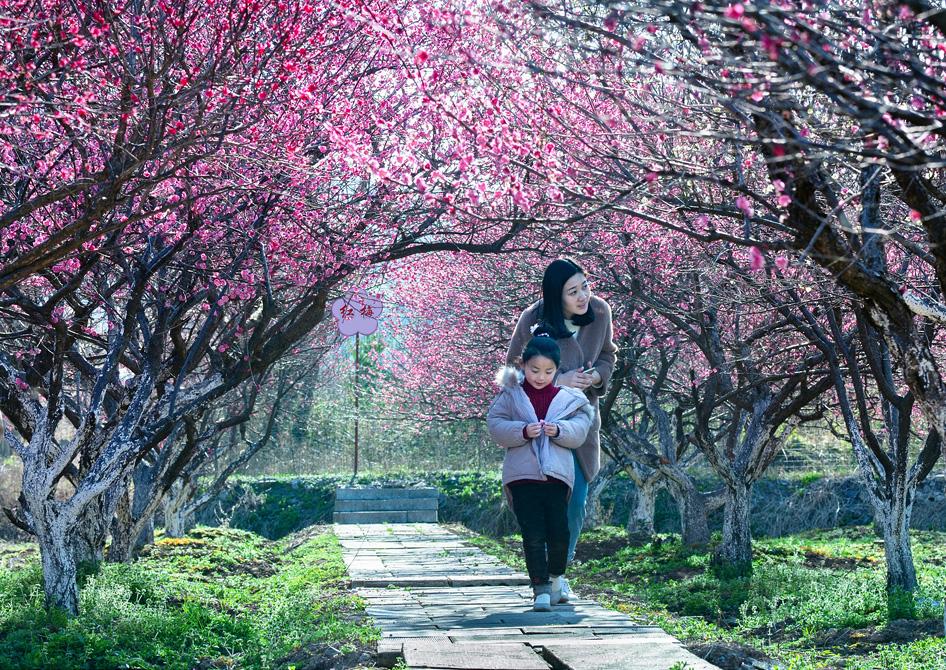 周厚瑶作品:春的微笑
