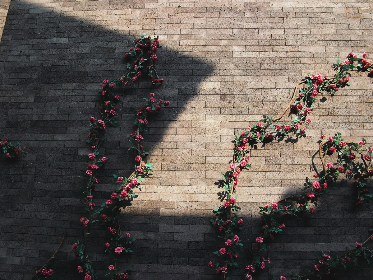 菠萝菠萝蜜蜂作品:墙壁上的花