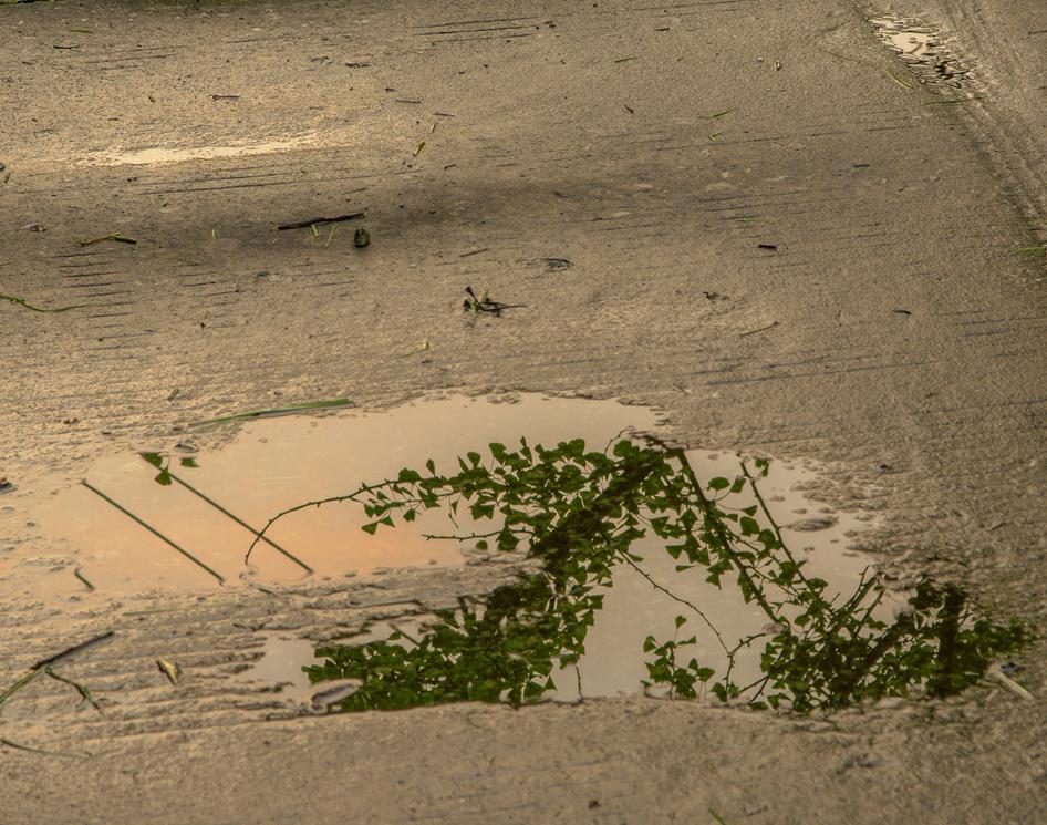 周厚瑶作品:雨后的路面
