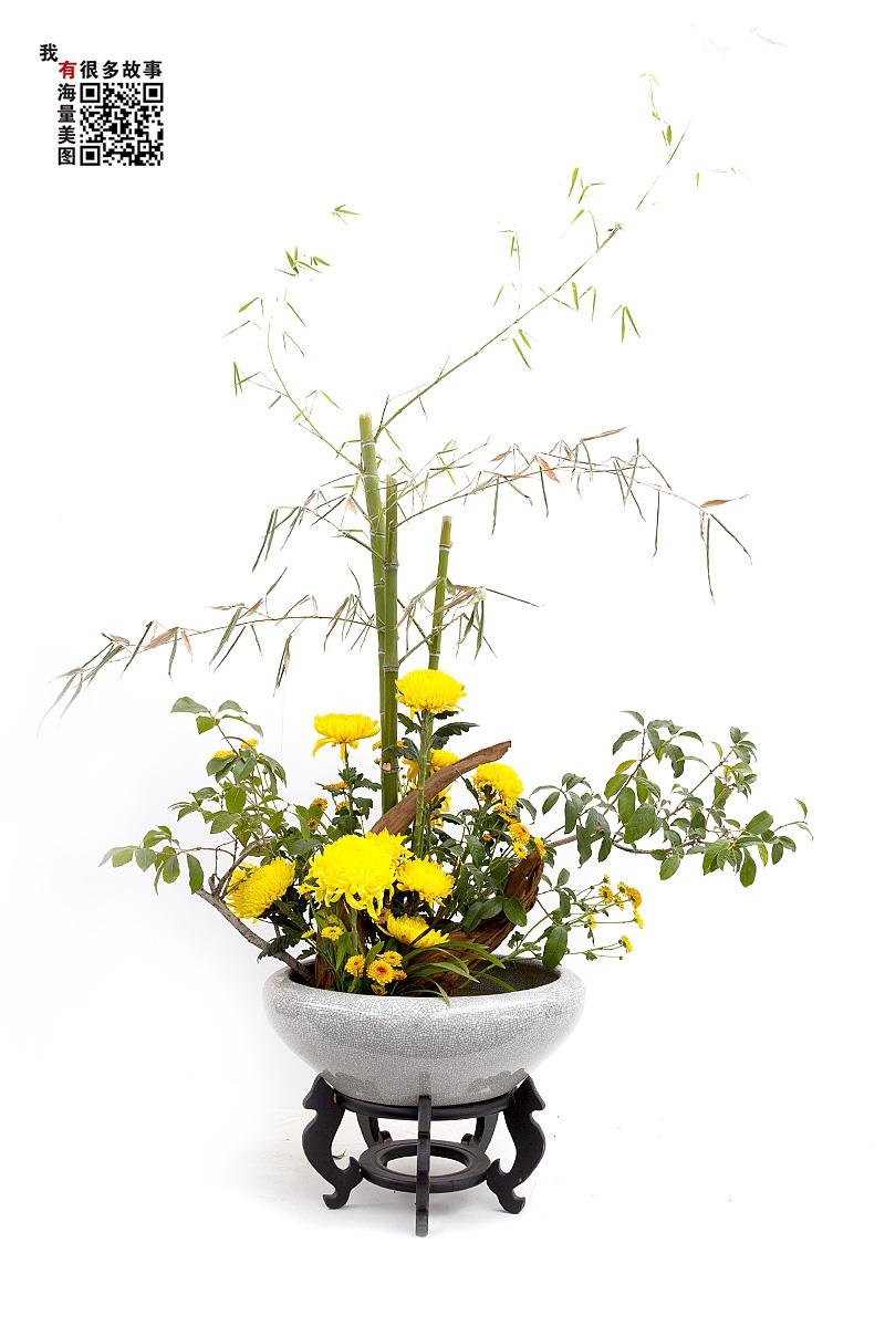 钟乳石作品:菊的精品插花
