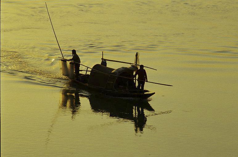 余迎霞作品:渔之一
