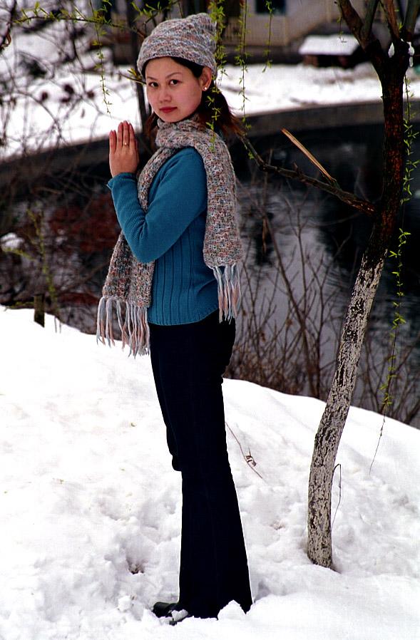 翼龙作品:春雪