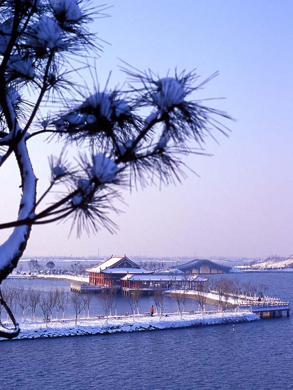 牧軎作品:雪染江南