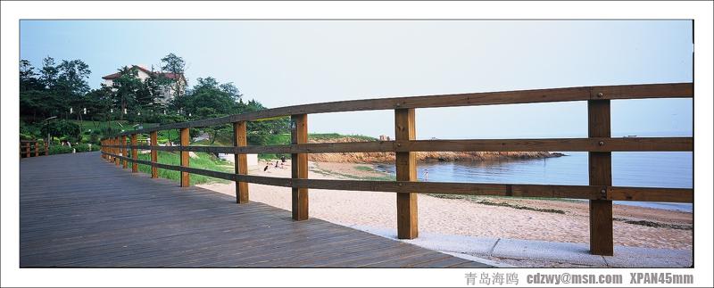 青岛海鸥作品:青岛风光