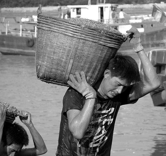 珠海老许作品:码头工人