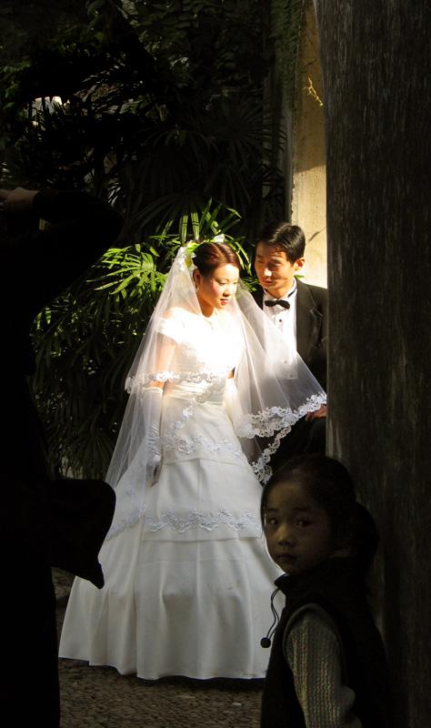 WittyWolff作品:新娘与女孩