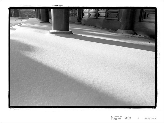 NEW100作品:---- 雪 与 影 ----