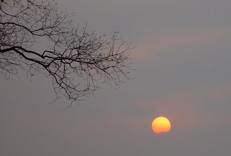易东作品:夕阳--构图练习