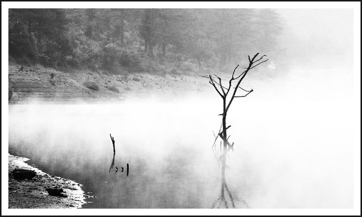 xzg5545作品:四海山之雾
