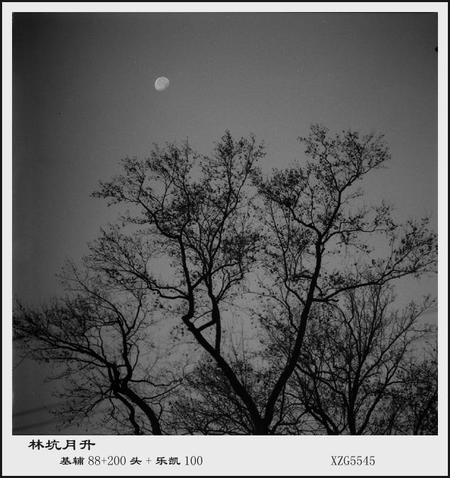 xzg5545作品:林坑月升