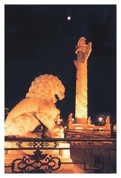阿洪作品:明月下的石狮与华表