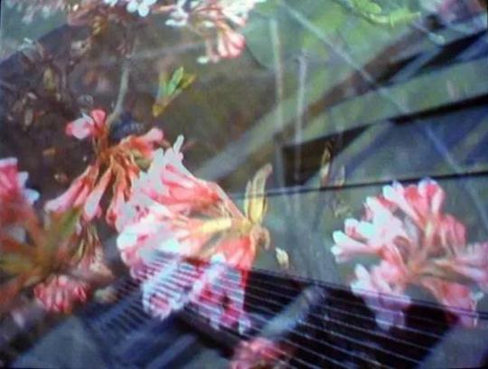 皮皮洛蒂·瑞斯特作品《伍拾五十》(图片由哈恩·内夫肯斯基金会提供)