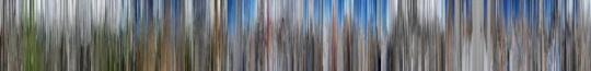 120 x 974cm (展出作品的2/3,分两段展出,每段长324.5cm 高度120cm )